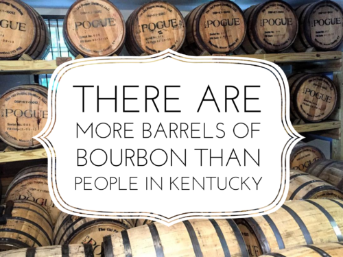 "The words, ""there are more barrels of bourbon than people in Kentucky"" written on a white sign in front of several racks of bourbon barrels from the Old Pogue Distillery"